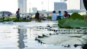 Lillystootkussens in de vijver op de voorgrond en vage mensen dichtbij het Museum van Marina Bay Sands ArtScience stock video