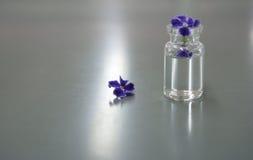 Lilor blommar i vetenskapsliten medicinflaska i labbet Royaltyfria Foton
