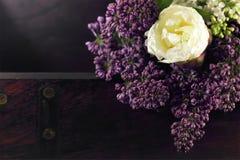 Lilor och tulpan Fotografering för Bildbyråer