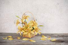 Lily in basket on background old  wall Stock Image
