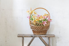 Lily in basket on background  white wall Stock Images