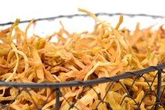 Lily Buds secada fotografia de stock
