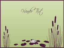 Lily and Cattails background. Vector Illustration Royalty Free Stock Photos