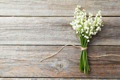 lily charakteru rosyjski nieznane doliny świat Zdjęcia Stock