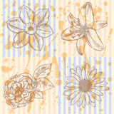 Lily, daisy and rose, narcissus  sketch,  seamless pattern Stock Photography