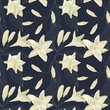 Lily Engraving Seamless Pattern tropicale Fond floral d'aquarelle Photos libres de droits