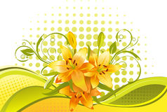 Lily,  floral background Royalty Free Stock Image