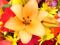 Lily flower. A closeup lily flower with different flowers background Stock Photo