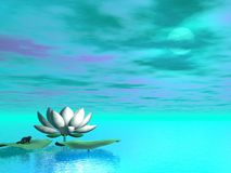 Lily flower - 3D render Royalty Free Stock Photography