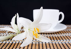 Lily flower with and a cup of tea Royalty Free Stock Images
