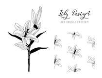 Lily Flower Design Art Brush en Patroon Vector Stock Afbeelding