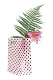 Lily flower and fern in a pink gift bag isolated Royalty Free Stock Images