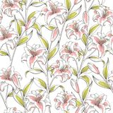 Lily flower graphic pink green color seamless pattern sketch illustration vector Royalty Free Stock Photography