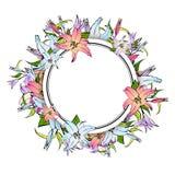 Lily Flower Round Frame Photographie stock libre de droits