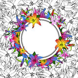 Lily Flower Round Frame Photographie stock