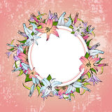 Lily Flower Round Frame Image stock