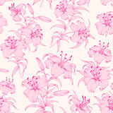 Lily flower seamless pattern. Stock Image