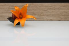 Lily flower on textured ceramic tile Royalty Free Stock Images