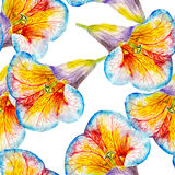 Lily flower watercolor seamless pattern. Bright tropical flowers isolated on white background. Stock Image