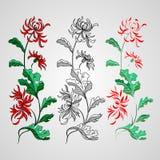 Lily flower  on white. Vector illustration. Stock Images