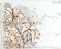Lily, flowers. Design of a vector background in vintage style Royalty Free Stock Images