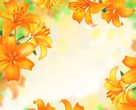 Lily Flowers border design. Royalty Free Stock Image