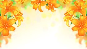Lily Flowers border design.Summer Flowers Stock Photo