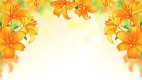 Lily Flowers border design.Summer Flowers Stock Photo