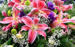 Lily flowers bouquet royalty free stock photography