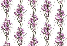 Lily Flowers Seamless Pattern Royalty Free Stock Photo
