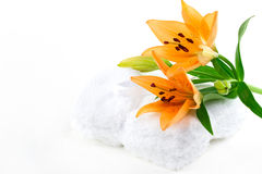 Lily flowers on tawels Stock Photos