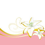 Lily flowers wave background Royalty Free Stock Photo