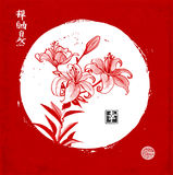 Lily flowers in white circle on red background. Traditional oriental ink painting sumi-e, u-sin, go-hua. Contains Stock Images