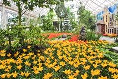 Lily Garden Arkivbild