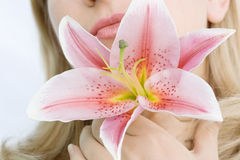 Lily in hands Royalty Free Stock Photography