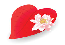 Lily heart. Vector pink lily on a red heart-shaped leaf royalty free illustration
