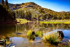 Lily lake stock images