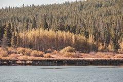 Lily Lake at Rocky Mountains, Colorado, USA. Royalty Free Stock Photo