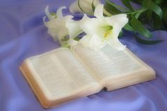 Lily Laying On A Antique Bible On Easter Morning Royalty Free Stock Image