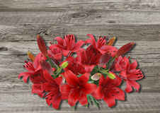 Lily on old wooden boarderes Royalty Free Stock Image