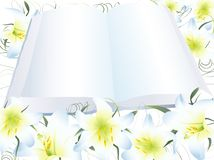Lily and open book stock illustration