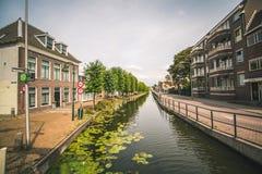 Lily Pads sur un canal à Rotterdam, Pays-Bas images libres de droits
