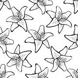 Lily Pattern. Hand-drawn abstract lilys on the white background. Pattern Stock Photography