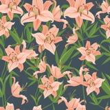 Lily pattern Royalty Free Stock Photo