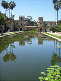 Lily pond, Balboa Park Royalty Free Stock Photos