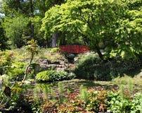 Lily Pond com ponte japonesa Foto de Stock