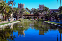 Lily Pond In Balboa Park, San Diego, California Royalty Free Stock Photo