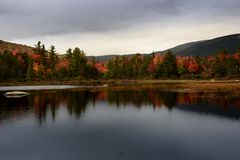 Lily pond on kancamagus highway during fall foliage season royalty free stock image
