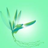 lily projektu royalty ilustracja