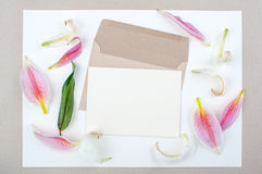 Lily put spread with green leaves. Brown envelope And writing paper On a white background, Lily put spread with green leaves royalty free stock photo